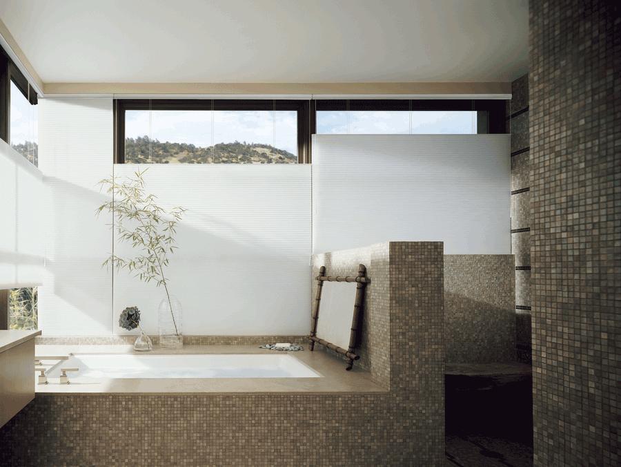 White top down bottom up shades bathroom design ideas Austin 78758