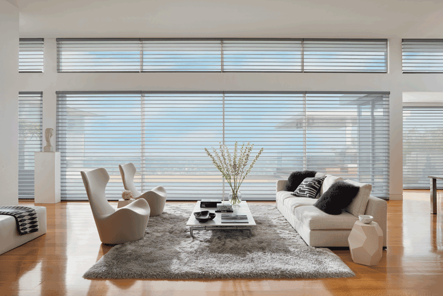 window problems minimalism Hunter Douglas Austin 78731