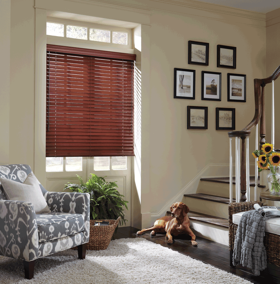 horizontal everwood pet safe blinds for dog owners Hunter Douglas Austin 78758