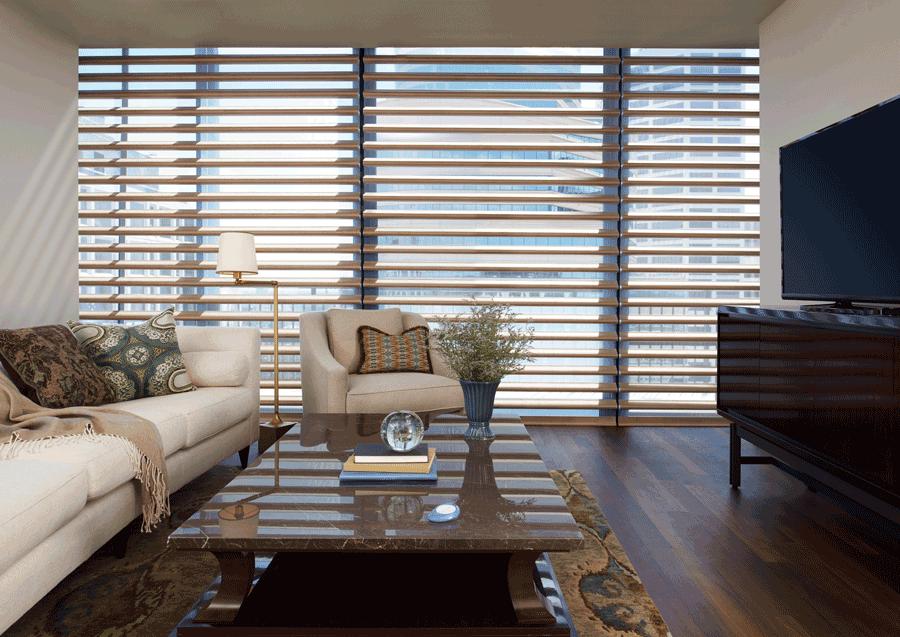 living room pirouette shades for floor to ceiling windows Hunter Douglas Austin 78758