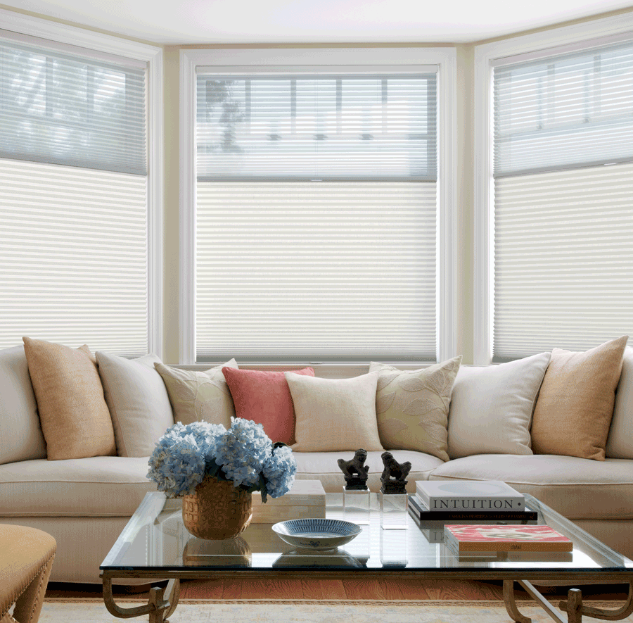living room duette honeycomb top down shades Hunter Douglas Austin 78731