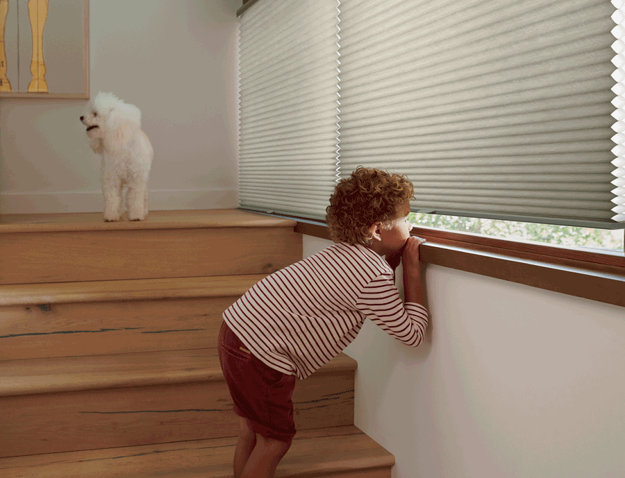 Hunter Douglas child safe blinds Austin TX