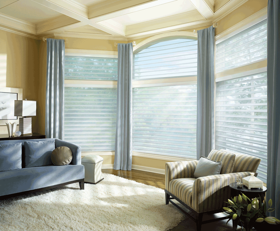 living room light filtering window shades on arched windows Austin TX