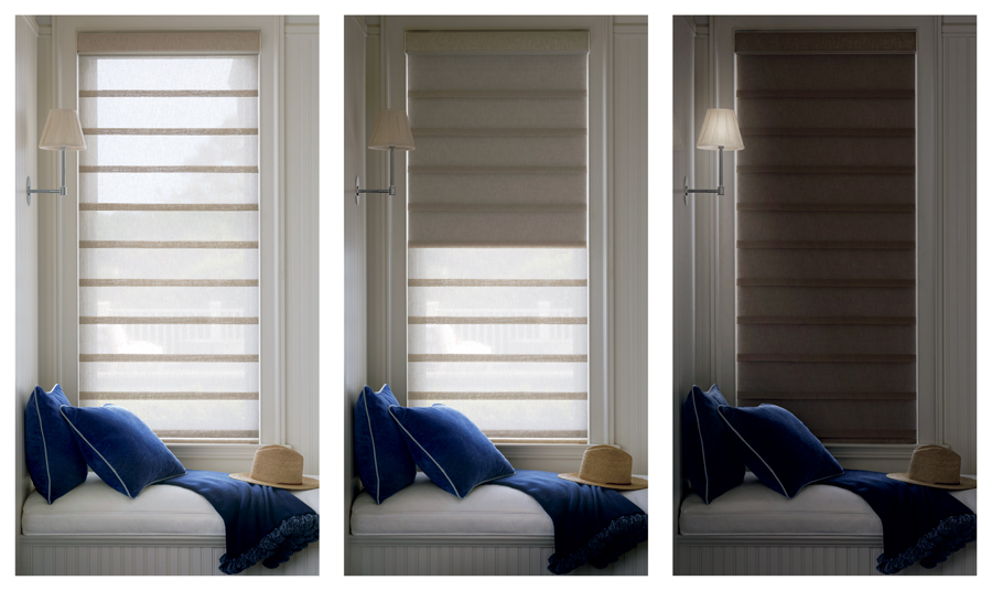 dual shades two in one window shade for Austin TX homes