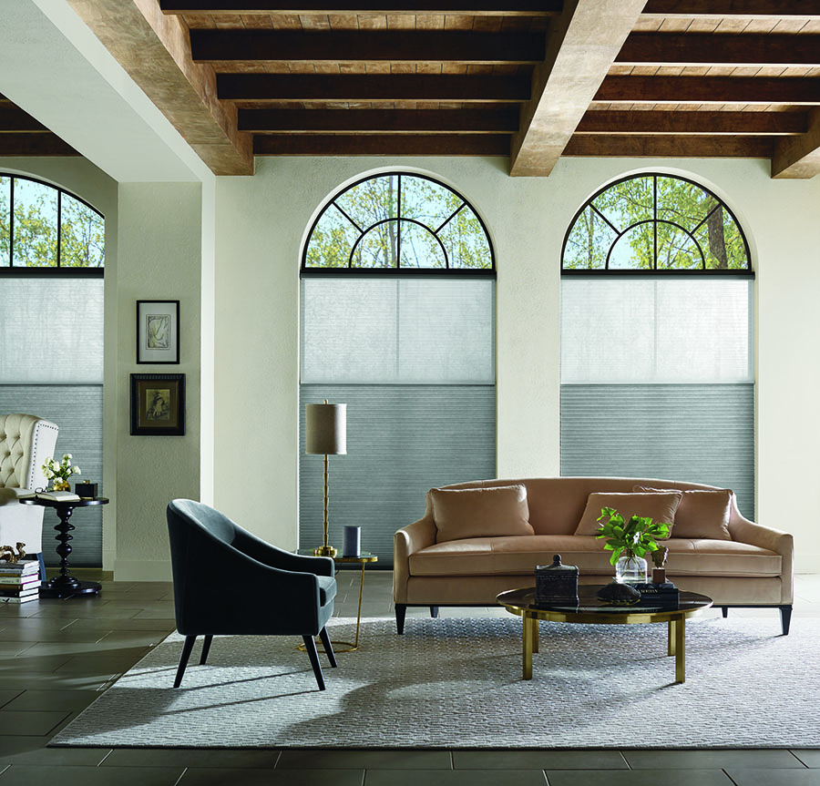 Austin, TX, Applause Honeycomb Shades on arched windows.
