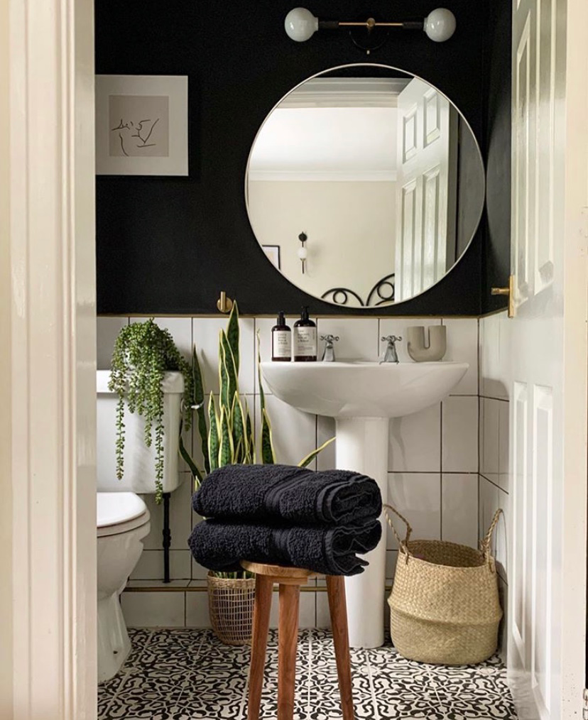 plants in bathroom with black walls and white wainscoting