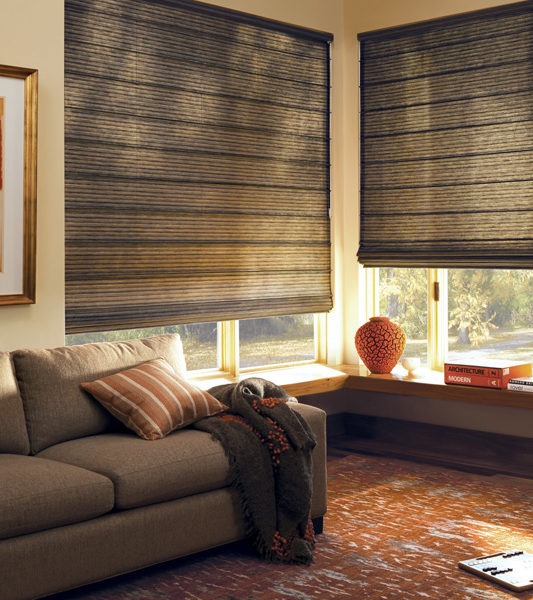 living room Hunter Douglas designstudio roman shades Austin TX