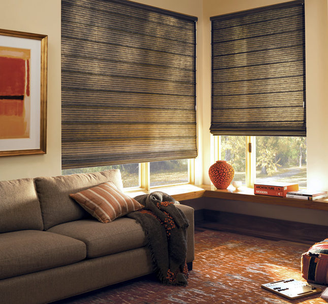 living room Hunter Douglas design studio roman shades Austin TX