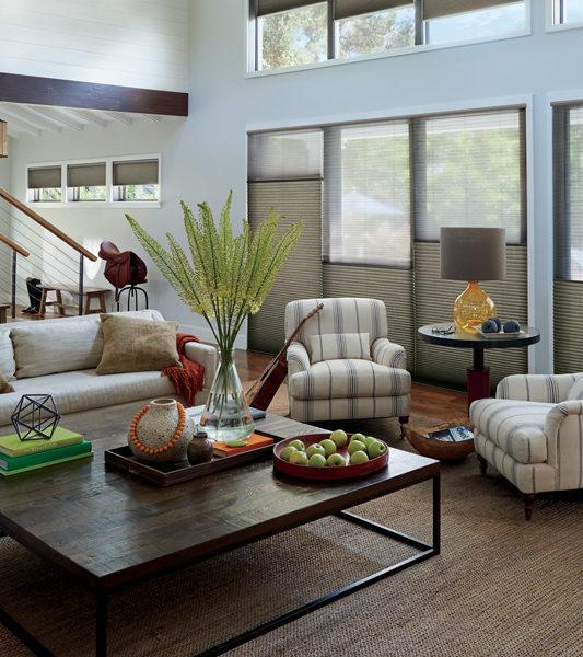 living room Hunter Douglas duette honeycomb shades Leander 78641