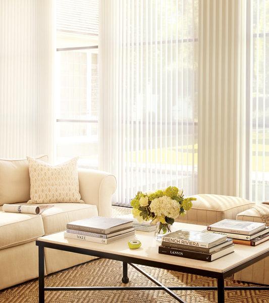window treatments for large windows vertical shades Austin TX