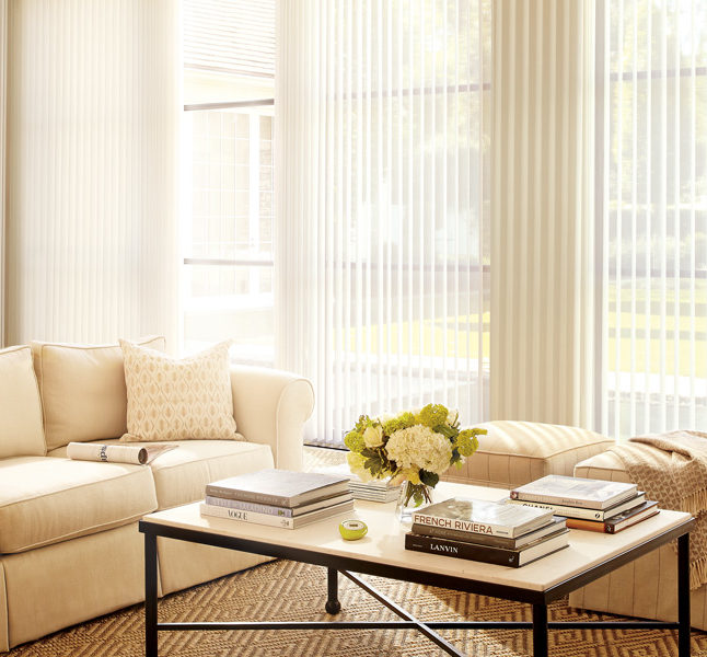 window treatments for large windows vertical shades Austin TX