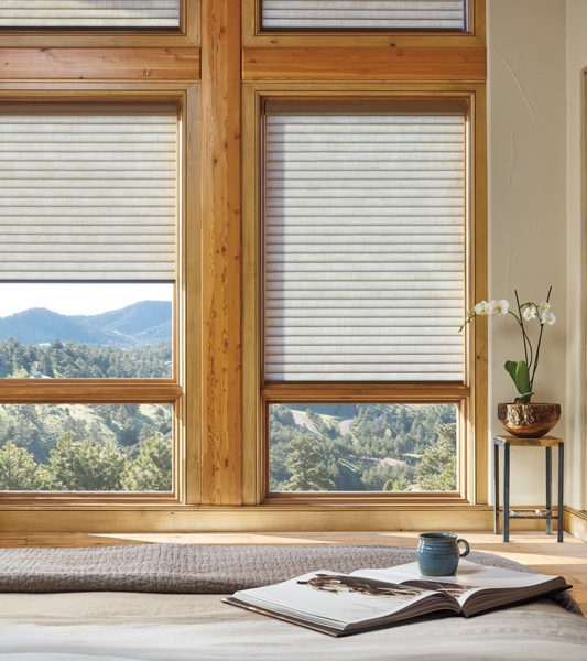 energy efficient window treatments Hunter Douglas sonnette cellular roller shades Austin TX