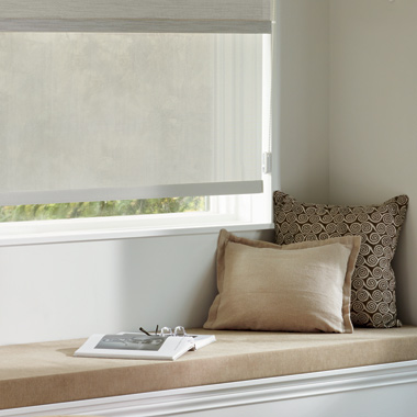 neutral roller shades dual shades in Austin TX