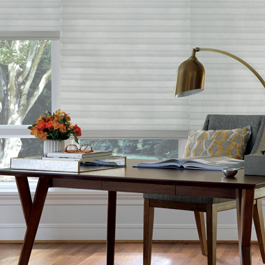 Home office Hunter Douglas solera white roman shades Austin TX