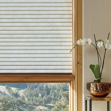 Hunter Douglas sonnette cellular insulated roller shades Austin TX