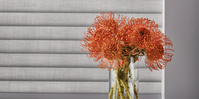 living coral design ideas Hunter Douglas Austin 78758