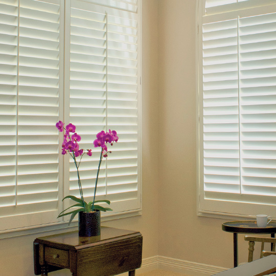 large window interior window shutters Austin 78738