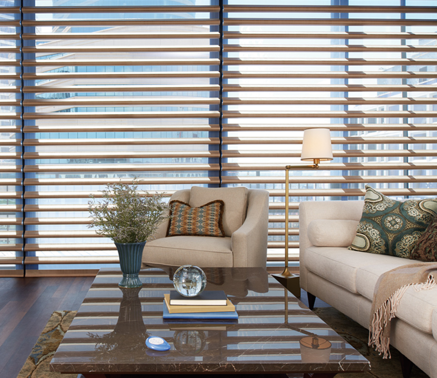 floor to ceiling windows in downtown Austin TX with hunter douglas pirouette shades