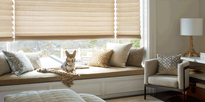 vignette modern roman shades for dog owners Hunter Douglas Austin 78758