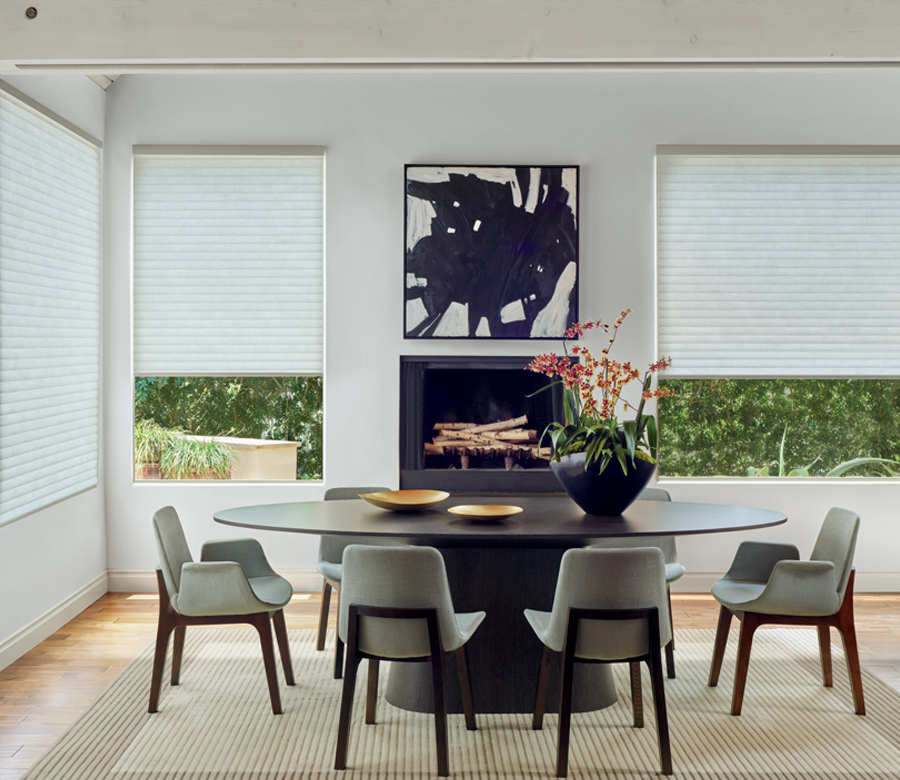 dining room sonnette shade Hunter Douglas Austin 78758