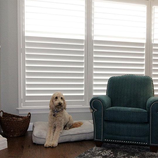split tilt shutters on large windows in Austin TX home
