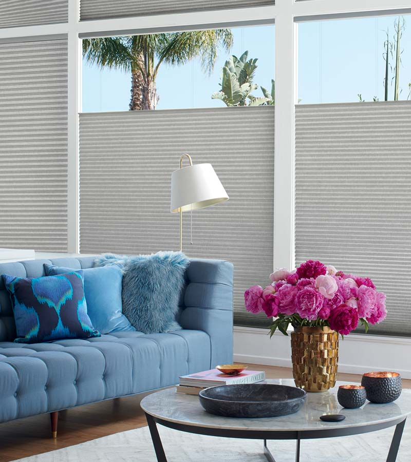 gray cellular shades on large windows in Austin TX
