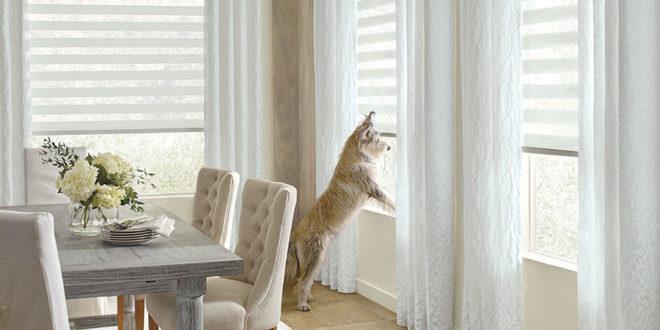 best pet friendly window coverings in Austin TX