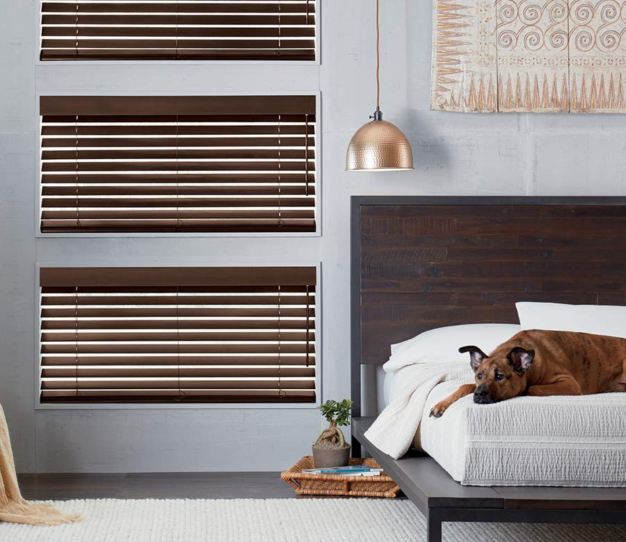 brown wood blinds in gray bedroom with dog sleeping on the bed